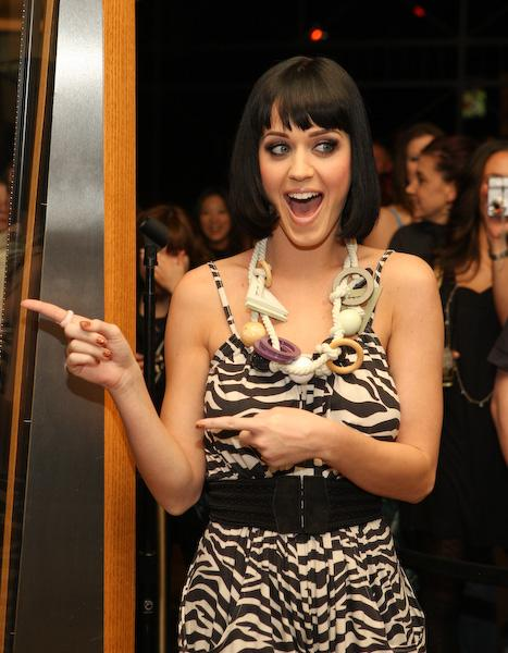 Katy Perry's Hot N Cold outfit displayed at Hard Rock Hotel
