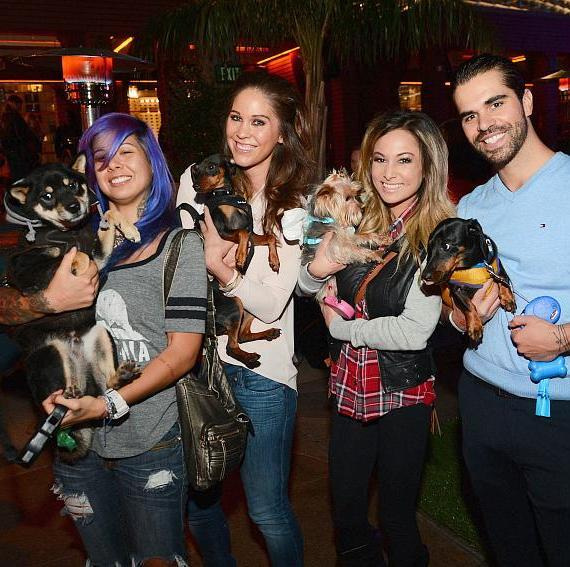 Guests and pets enjoying BarQuee at Marquee in Las Vegas