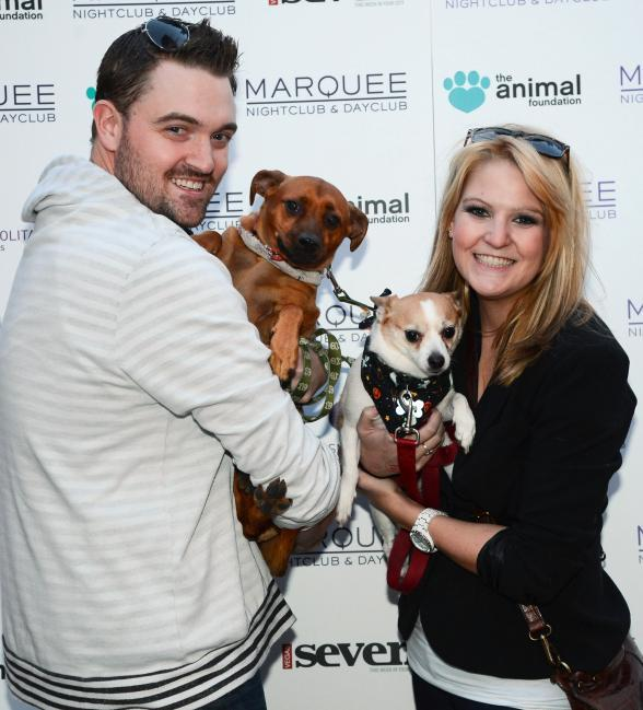 200+ Dogs Take Over Marquee for BarQuee Charity Event in Las Vegas