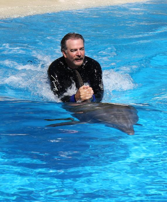 Bill Engvall swimming with Maverick at Siegfried & Roy's Secret Garden and Dolphin Habitat