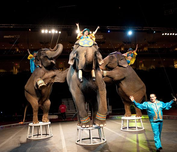 2012 Circus Spectacular Brings New Line-up to Orleans Arena Jan. 5-8