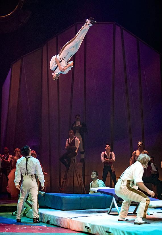 Cirque du Soleil performers reach new heights at fifth annual One Night for One Drop