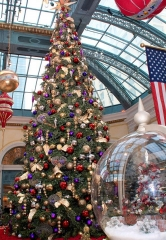 Most Wonderful Time of Year Arrives at Bellagio's Conservatory & Botanical Gardens