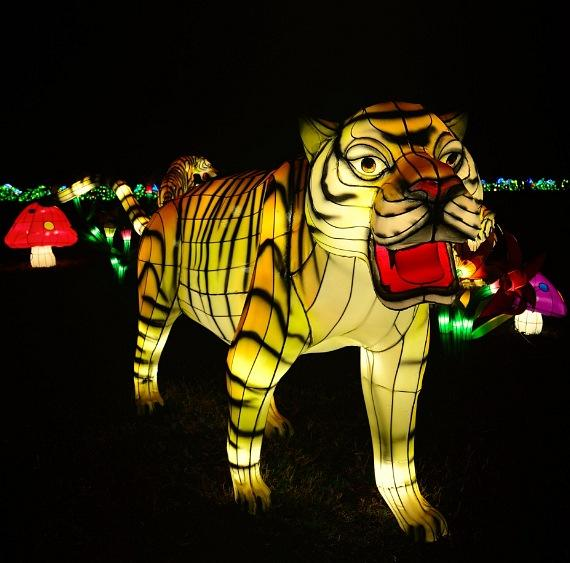 World-Class China Lights Festival Coming to Craig Ranch Regional Park in North Las Vegas