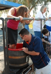 Kick Off Your Shoes and Stomp Your Feet at the Annual Pahrump Valley Winery Grape Stomp