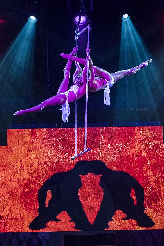 Duo Trapeze performed by The Steben Twins