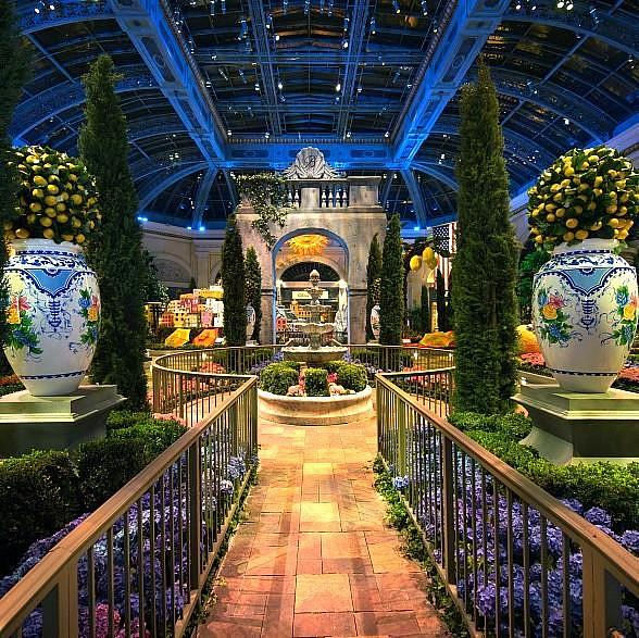 Bellagio 39 S Conservatory Botanical Gardens Celebrates Summer With Its First Italian Inspired