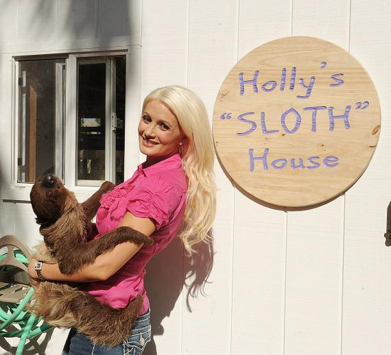 Holly's Sloth House
