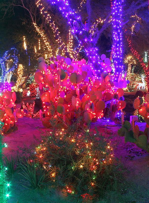 Tickets Now Available for Ethel M Chocolates' 22nd Annual Holiday Cactus Lighting Event