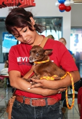 Towbin Dodge Hosts Adoption Drive in Partnership with Nevada SPCA