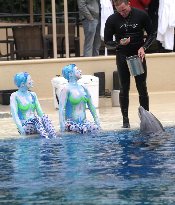 """""""O"""" cast members swim with the resident dolphins"""