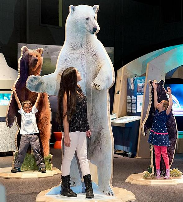 """Arctic Voices"" Exhibit at Springs Preserve Explores Adaptation in the Arctic; New Exhibit Opens in Origen Museum February 20"