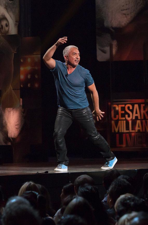 Dog Expert Cesar Millan performs Live at The Pearl at Palms Casino Resort in Las Vegas
