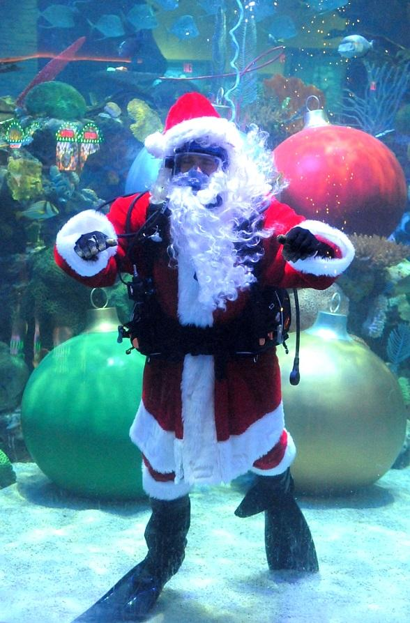 Pose for Your Christmas Photos with the first Underwater Santa at Silverton Casino Lodge