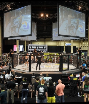 Meet UFC Superstars, UFC Hall of Famers and Legends at UFC Fan Expo July 10-11