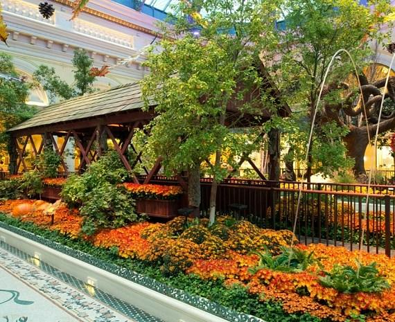 Bellagio Conservatory - Fall Display - Bridge