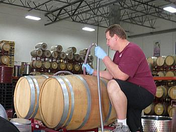 Grape Expectation uses state-of-the-art winemaking equipment