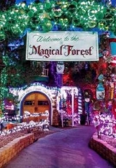 Magical Forest Celebrates 25 Years of Spreading Holiday Cheer with Tree Lighting Nov. 25