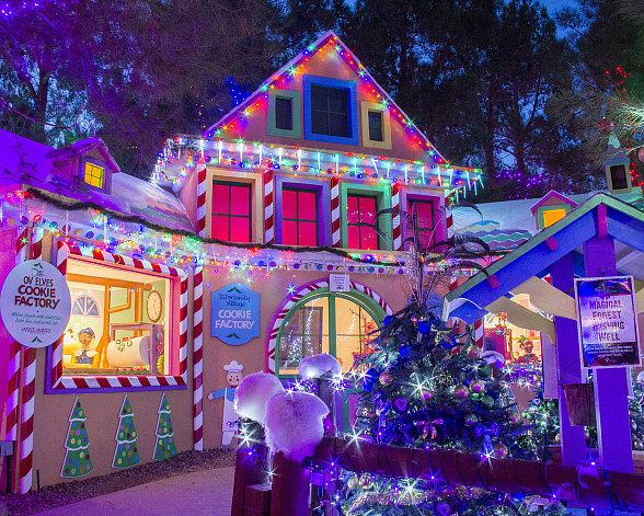Magical Forest Celebrates 25 Years of Spreading Holiday Cheer with Tree Lighting Ceremony