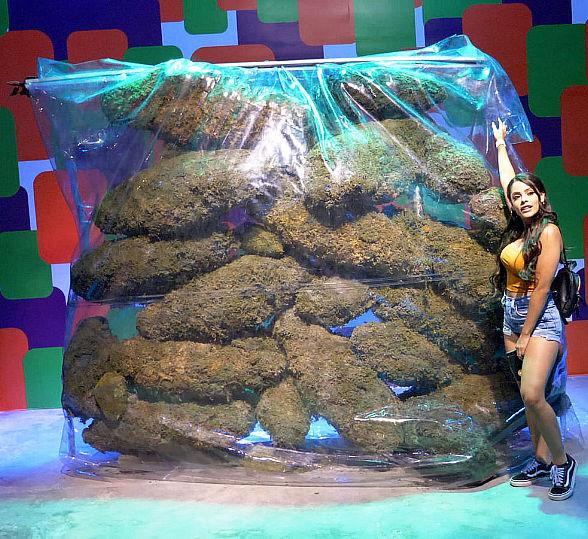 Cannabition Cannabis Museum Opens in Downtown Las Vegas -- World's First Cannabis-Themed Attraction of Its Kind Celebrates Cannabis Lifestyle, Wellness, Culture