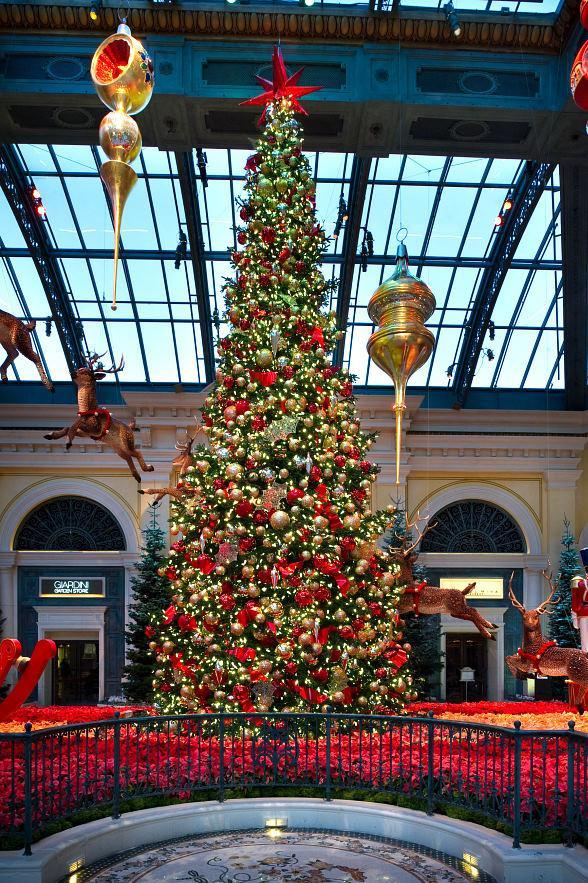 Winter Wonderland Arrives at Bellagio's Conservatory & Botanical Gardens