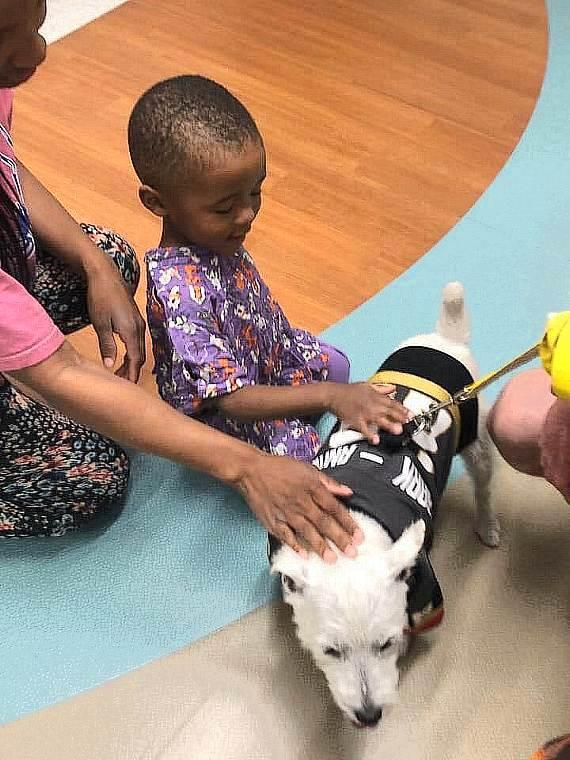 Bark Andre Furry greets patients at the The Children's Medical Center at Summerlin Hospital Medical Cente