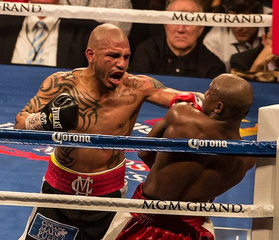 Cotto pins Mayweather in the corner, connects with a left