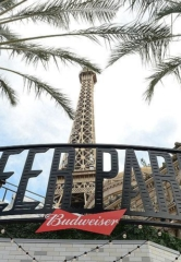 Beer Park at Paris Las Vegas to Host Pop-Up Experiences Throughout Electric Daisy Carnival