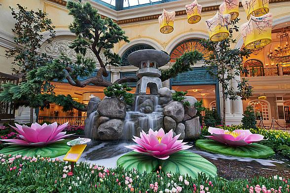Spring Blooms with Japanese Inspiration in Bellagio's New Conservatory & Botanical Gardens Display