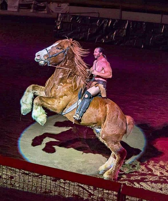 """Acrobatic Equestrian Production """"Gladius The Show"""" Coming to the South Point Arena and Equestrian Center on July 21"""