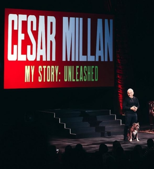 Cesar Millan and his dog, Junior, during the grand opening performance of Cesar Millan My Story - Unleashed, Sept. 13