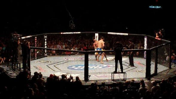The Truth about Sports Betting: Why it May help to Keep the MMA Honest