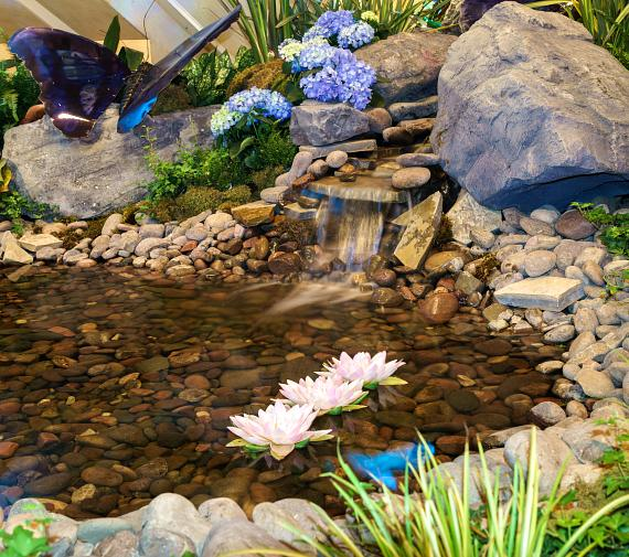 Butterflies and Bearded Irises at the Waterfall Atrium and Gardens of The Palazzo