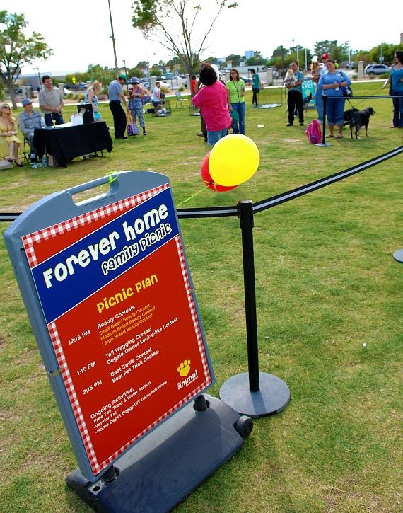 Forever Home Picnic to Benefit the Lied Animal Foundation