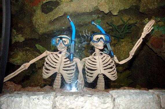 Skeletons at Haunted Reef