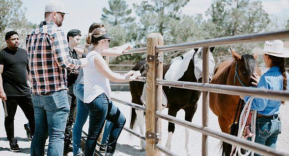 Monthly Gathering of Entrepreneurs and High Performers Leverages Equine Interactions to Improve Executive Leadership Skills