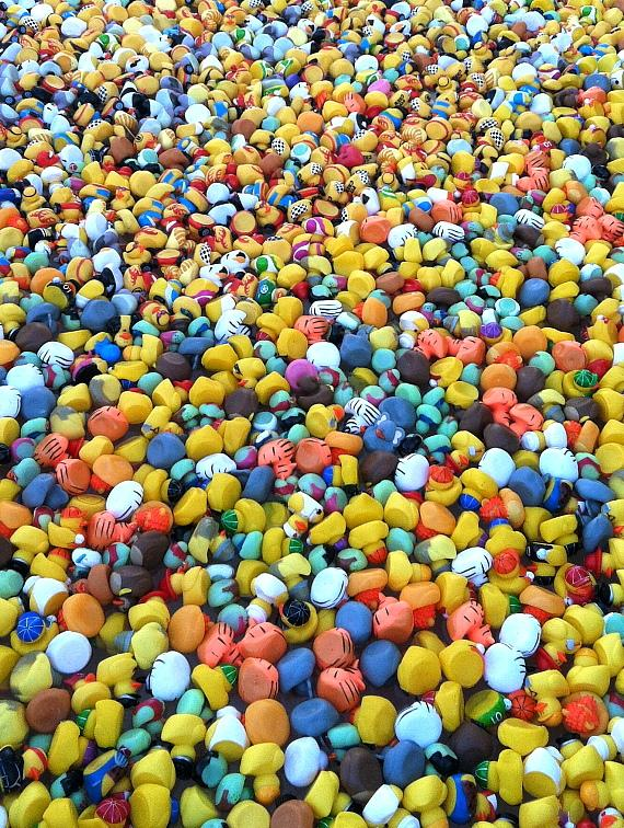 25,000 rubber ducks Palms Place Pool