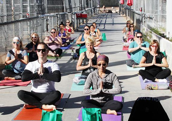 Lion Yoga Fundraiser Benefits the Lion Habitat Ranch in Las Vegas