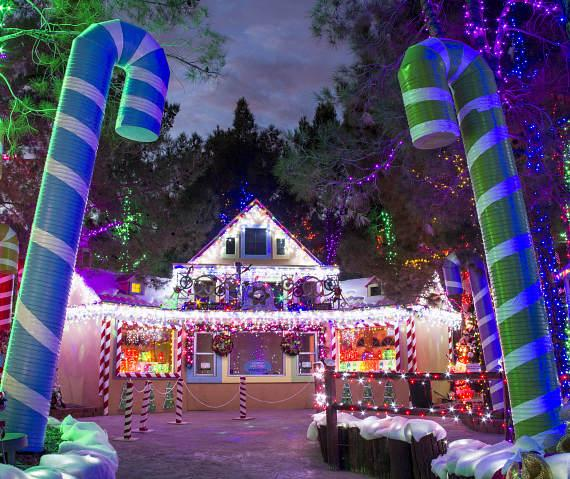 Magical Forest Cookie Factory