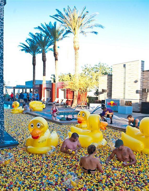 Palms Duck Party with 25,000 ducks