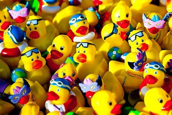 Rubber ducks at Palms Duck Party