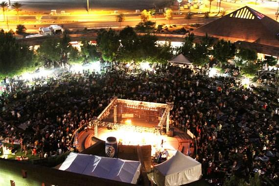 Aerial shot of Reggae In The Desert