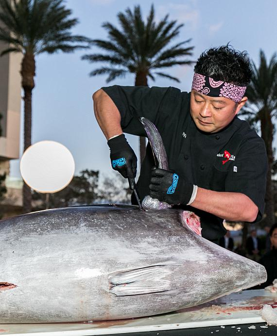 Great Tuna Cutting by Naked Fish of the 300-lb tuna
