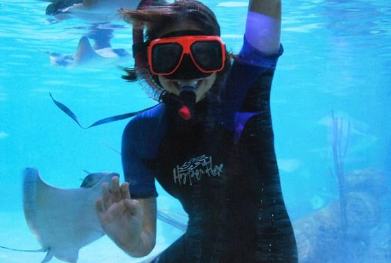 Snorkeling at SeaQuest Interactive Aquarium