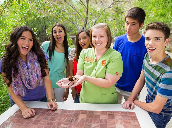 BUGS! Live Animal Show at The Springs Preserve Opens Weekends Starting March 12