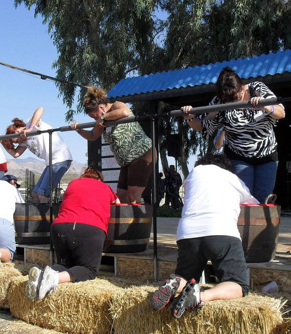 Stomping Competition at Grape Stomp Festival Pahrump Valley Winery