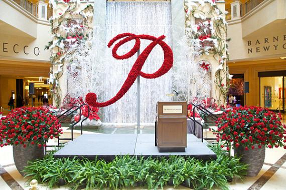 The Palazzo Waterfall & Atrium Gardens