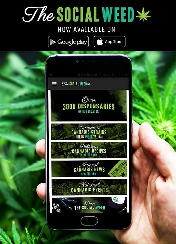 Introducing a Premier Social Networking App for Cannabis Enthusiasts