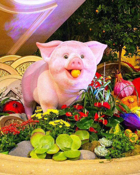 """The Venetian Resort Las Vegas Kicks off the """"The Year of the Pig"""" with a Ceremonial Lion Dance on Feb. 5"""