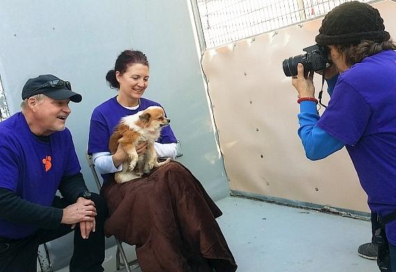 Volunteers taking photos of Pomeranian dogs for adoption